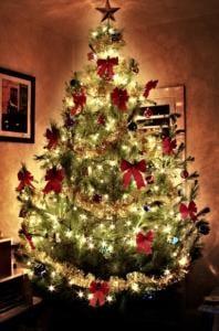 Stojánky na vánoční stromeček - výběr těch nej
