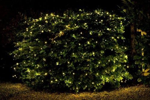 Nádherné světelné řetězy jako dekorace na keř do zahrady.