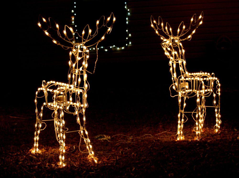 Svíticí světelní soby jako dekorace do zahrady.