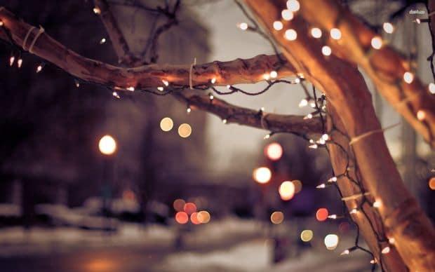 Holý hnědý strom ozdobený drobnými světýlky.