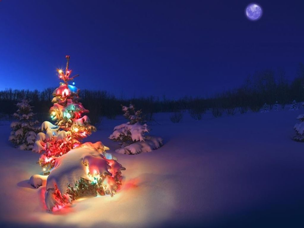 Pozadí s motivem noční zasněžené přírody a s barevně svítícím stromečkem.