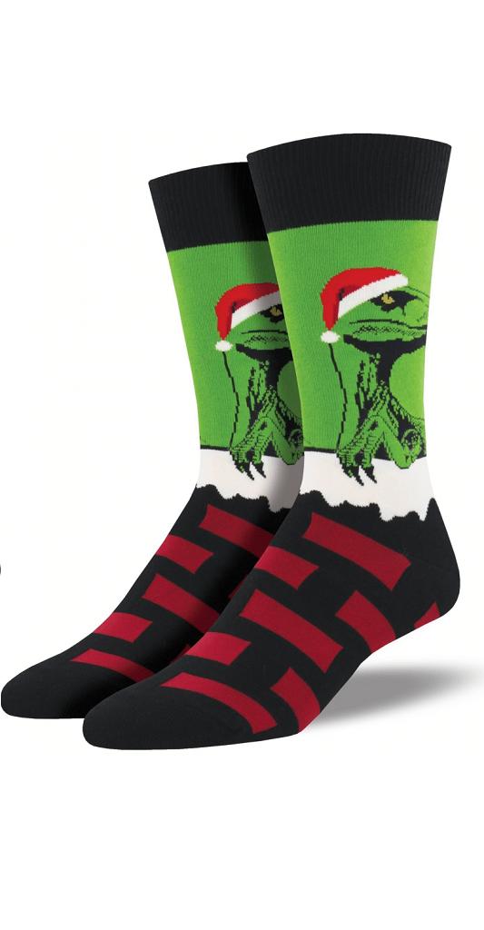 Ponožky pro pány s Raptorem