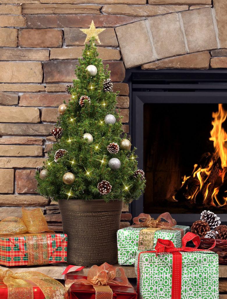 Vánoční stromeček nesmíme dávat ke zdroji tepla, ačkoliv to vypadá hezky.