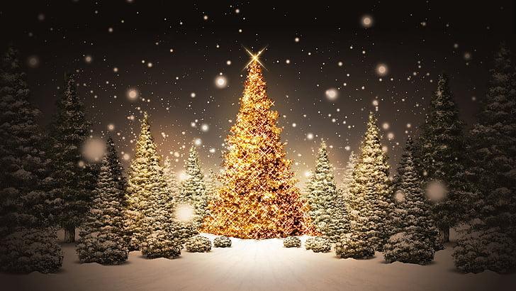 Pozadí s vánočním stromečkem.