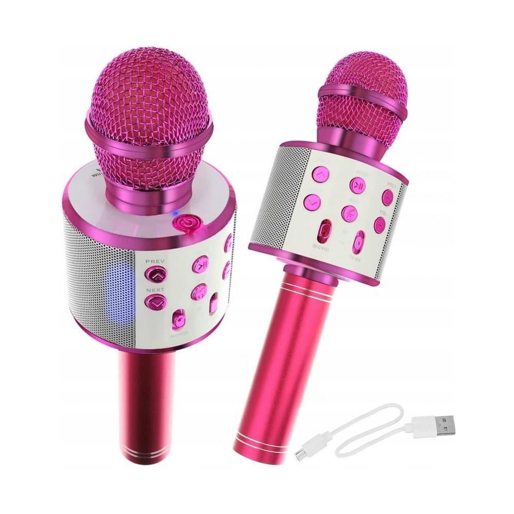 Karaoke mikrofon pro holky.