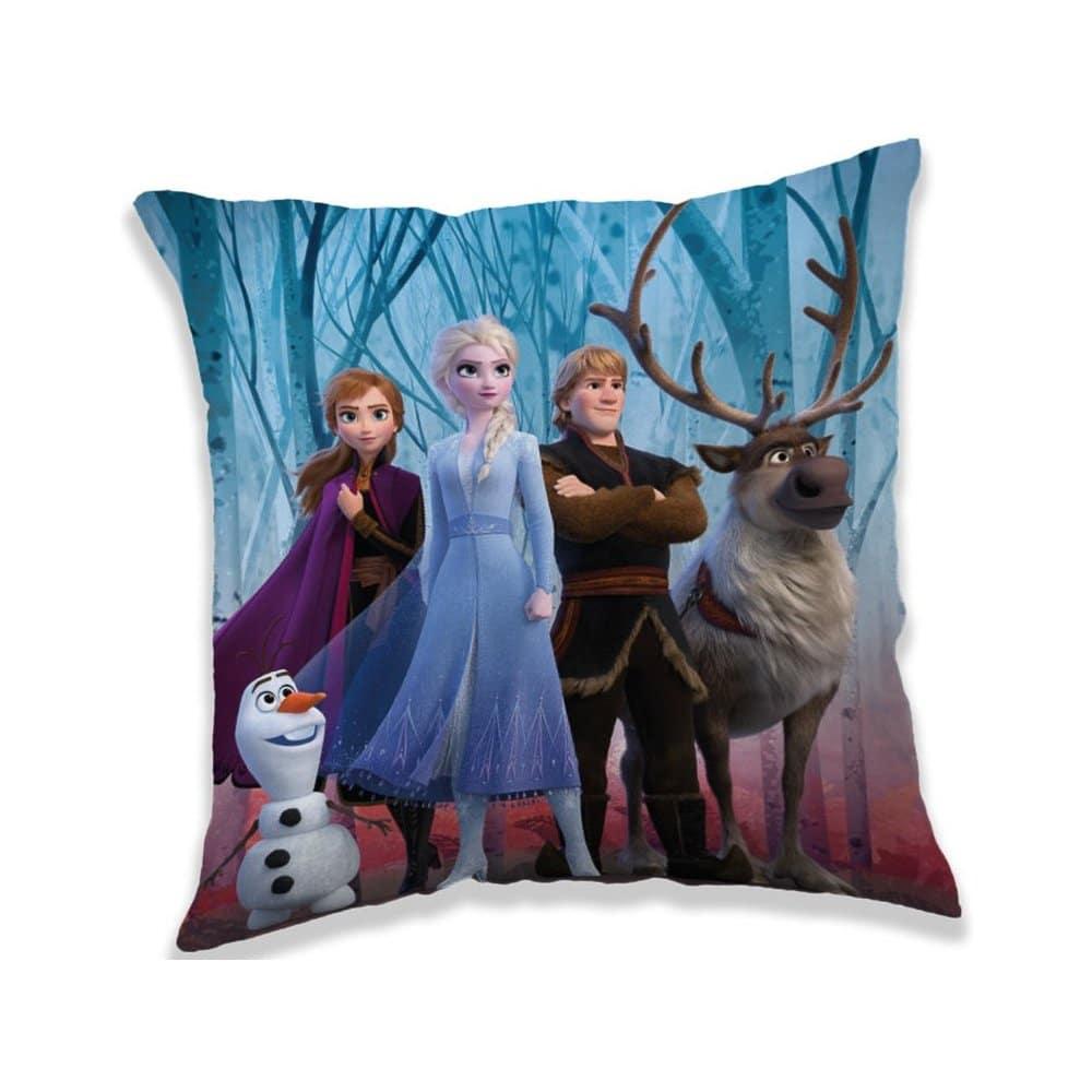 Pohodlný polštářek s postavičkami Ledového království.